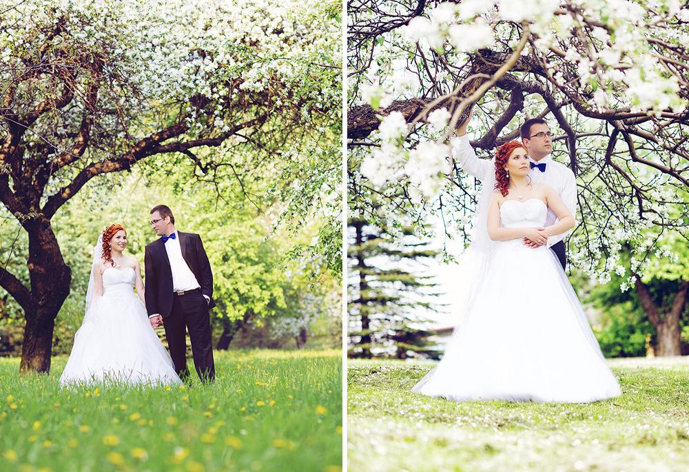 Sesja-ślubna-w-parku